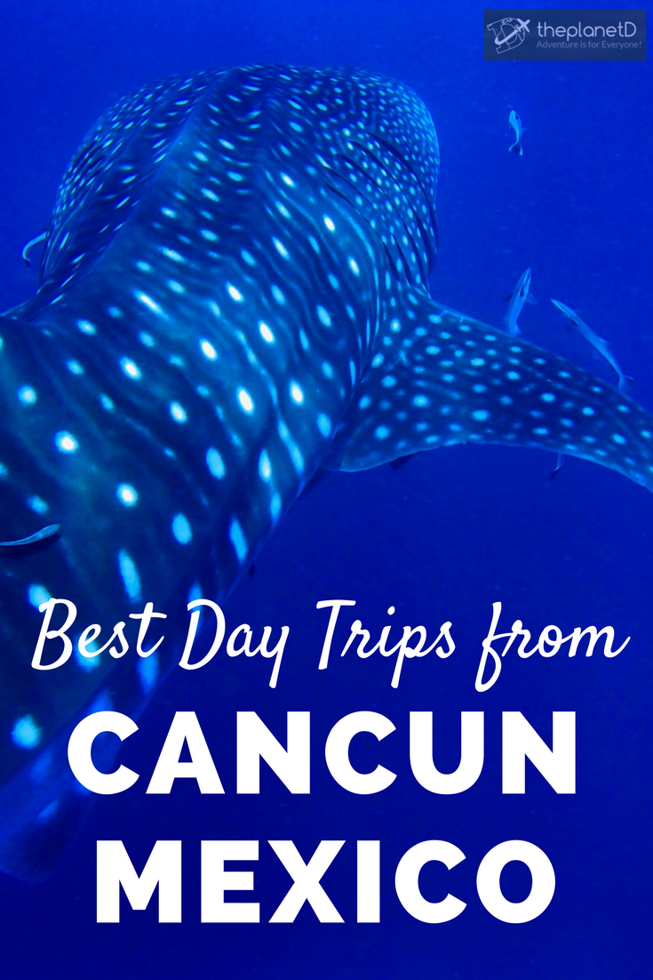8 awesome day trip ideas from Cancun, Mexico. Visit Tulum, a city overlooking turquoise waters and featuring wonderful beaches. Partake in the nightlife in Playa del Carmen or head out of the city and into the water for a swim with whale sharks. Swim in hidden jungle cenotes and photograph ancient ruins. Travel in Mexico | Blog by the Planet D #Cancun #Mexico