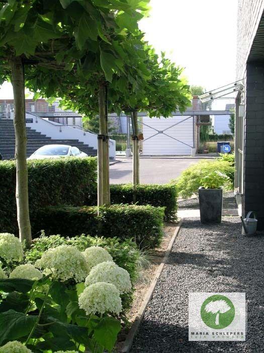 onderhoudsarme tuin maria schlepers tuinontwerp dronten