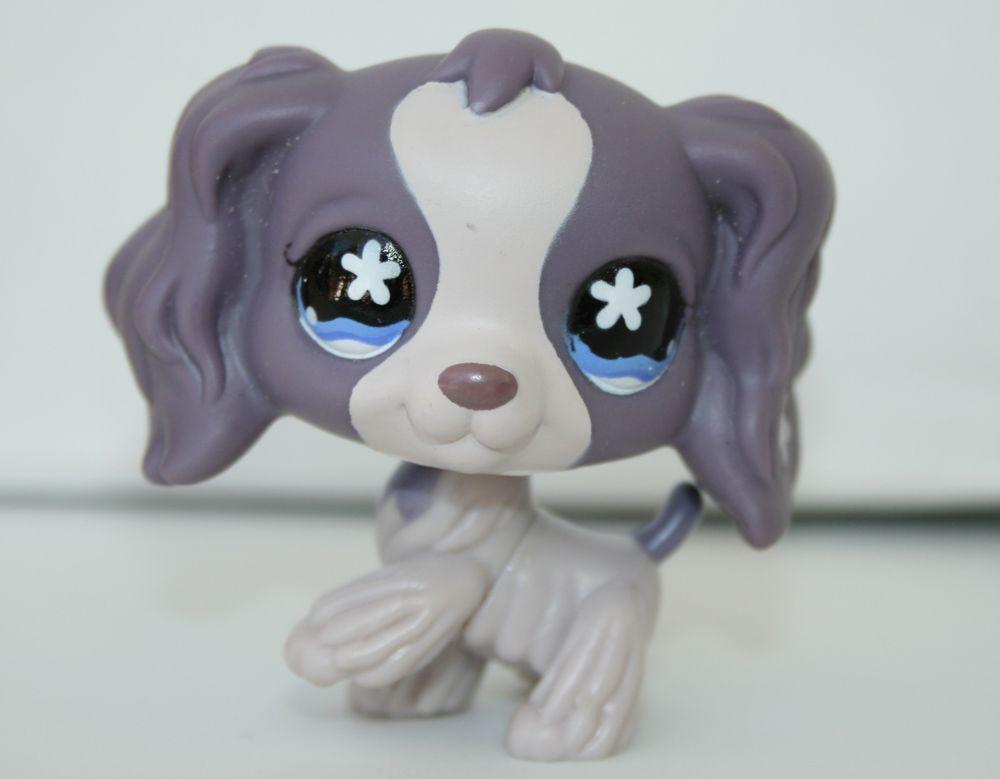 Littlest Pet Shop Rare Cocker Spaniel Dog Puppy 672 Purple Flower