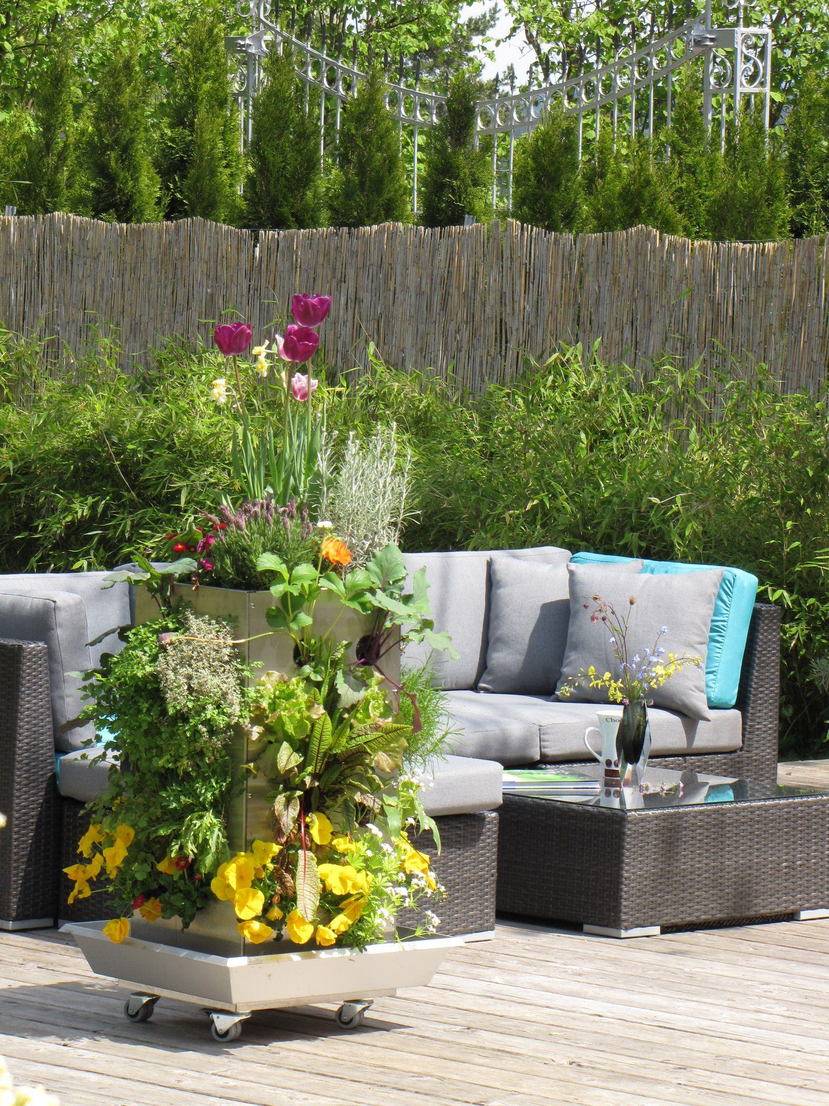 Kubi Maxi Und Kubi Mini Auf Der Terrasse. #kubi #hochbeet ... Gemuse Auf Dem Balkon Hochbeet Garten