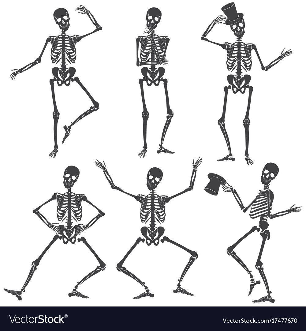 Dancing Skeletons Different Skeleton Poses Vector Image Affiliate Skeleton Skeletons Dancing Skeleton Tattoos Skeleton Drawings Skeleton Illustration