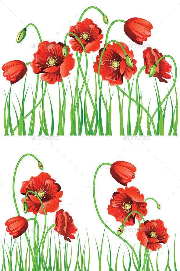 Poppy Flowers with Grass AD Poppy, affiliate, Flowers