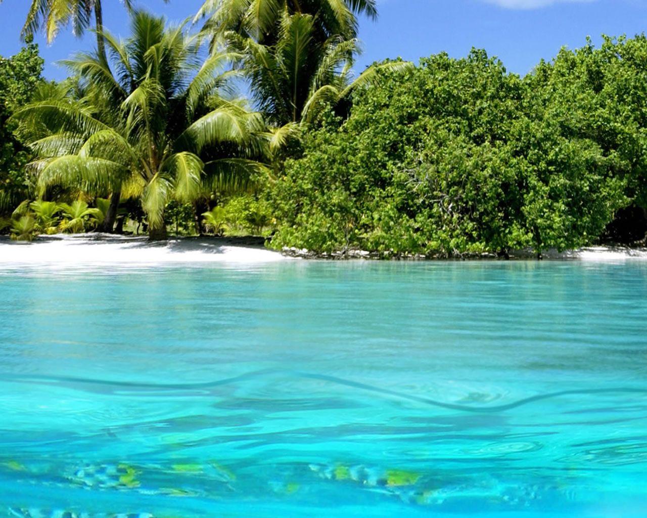 hd wallpapers aruba beach scene desktop wallpaper beaches islands