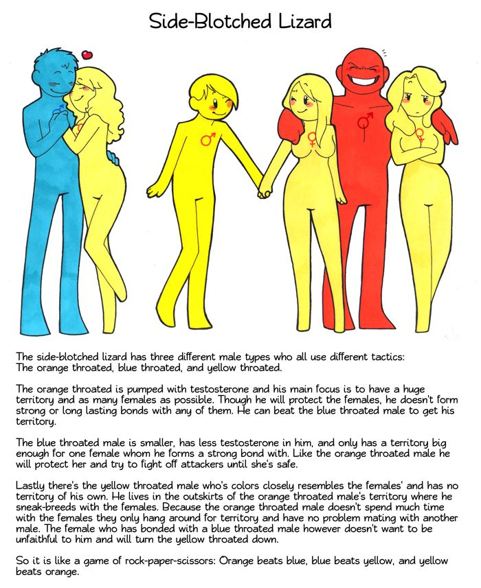Mating rituals of humans
