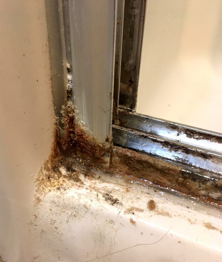 How to clean your shower doors with 2 simple ingredients