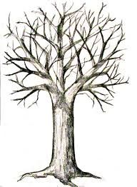 Image Result For Realistic Tree Trunk Drawing Trees Drawing Tutorial Tree Drawings Pencil Tree Drawing