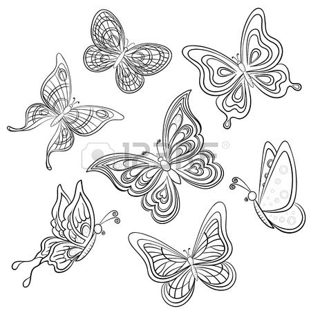 Stock Vector | Butterflies | Flower line drawings, Butterfly