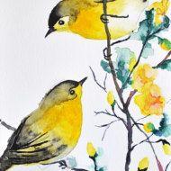 ORIGINAL Watercolor bird painting, Rainbow Roller 6x8 Inch #coloringpagestoprint