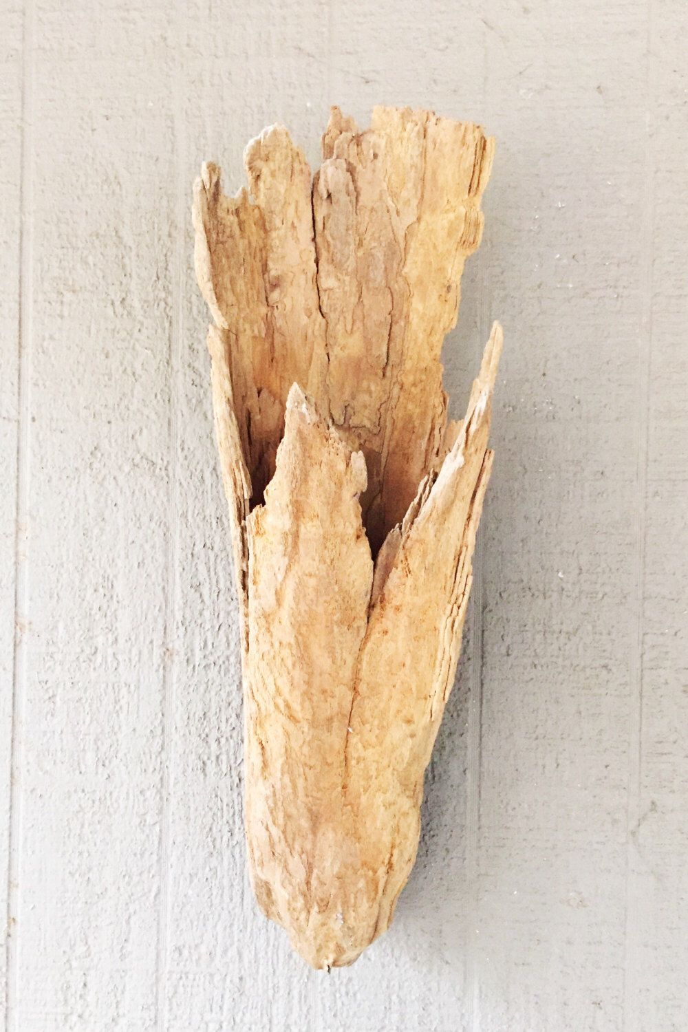 Large Cypress Driftwood Stump Knee Wall Hanging Vase Planter Approx ...