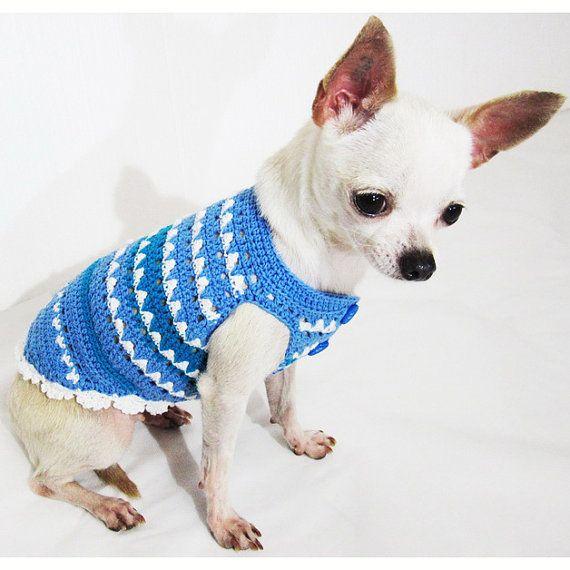 Perro azul ropa chico verano turquesa moda mascotas por myknitt ...
