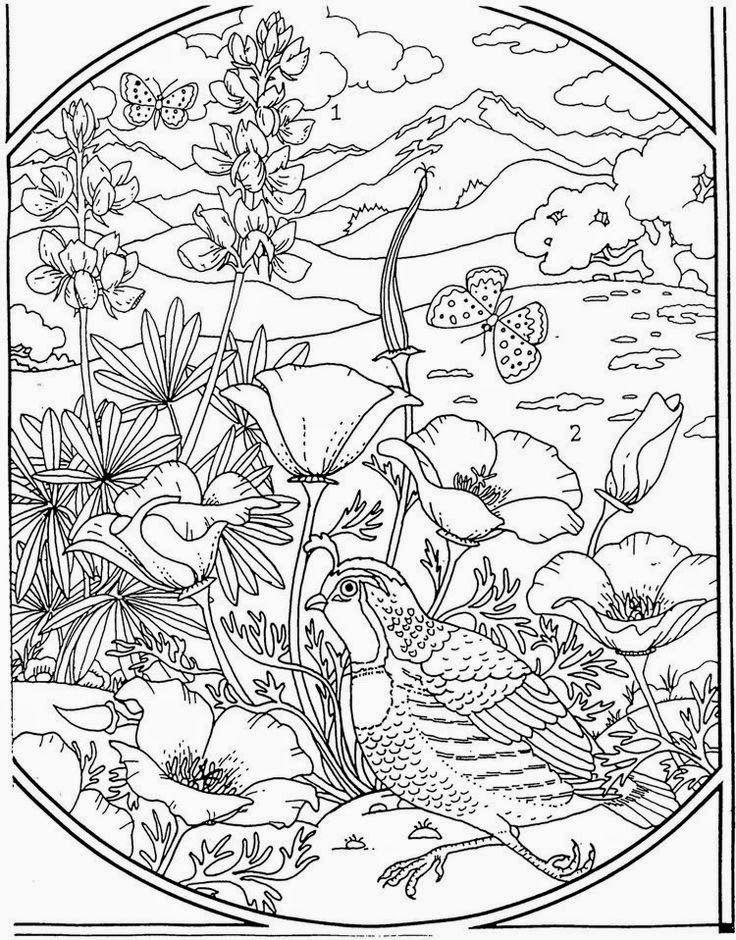Птица на клумбе с цветами в 2020 г   Раскраски, Книжка ...