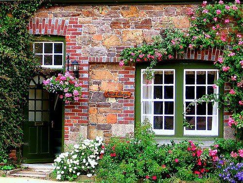 Resultado de imagem para janelas com roseiras