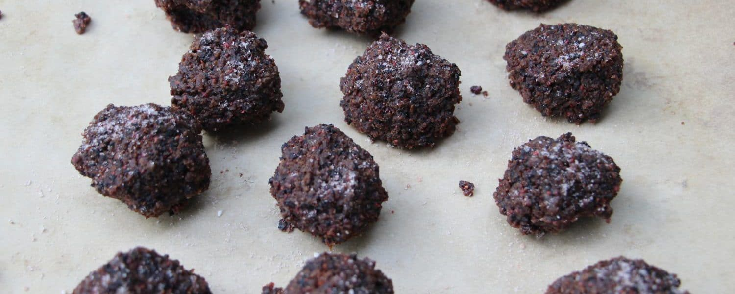 How To Make Pemmican (With images) Prepper food, Food