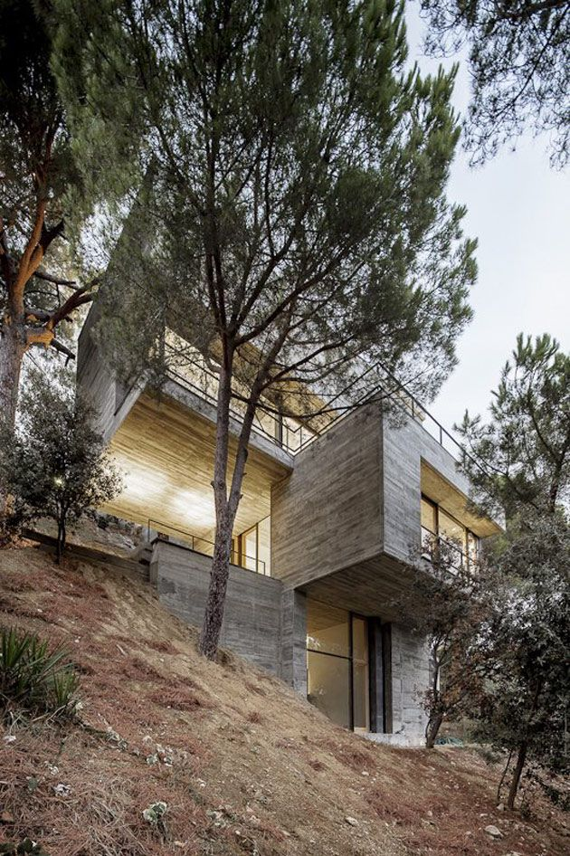 Steep Slope House Design Goes Vertical Just Like Trees Architecture Modern House Design Architecture Design
