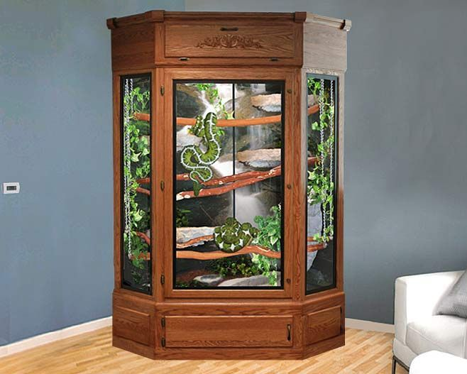 Turning An Old Curio Cabinet Into A Custom Reptile Enclosure