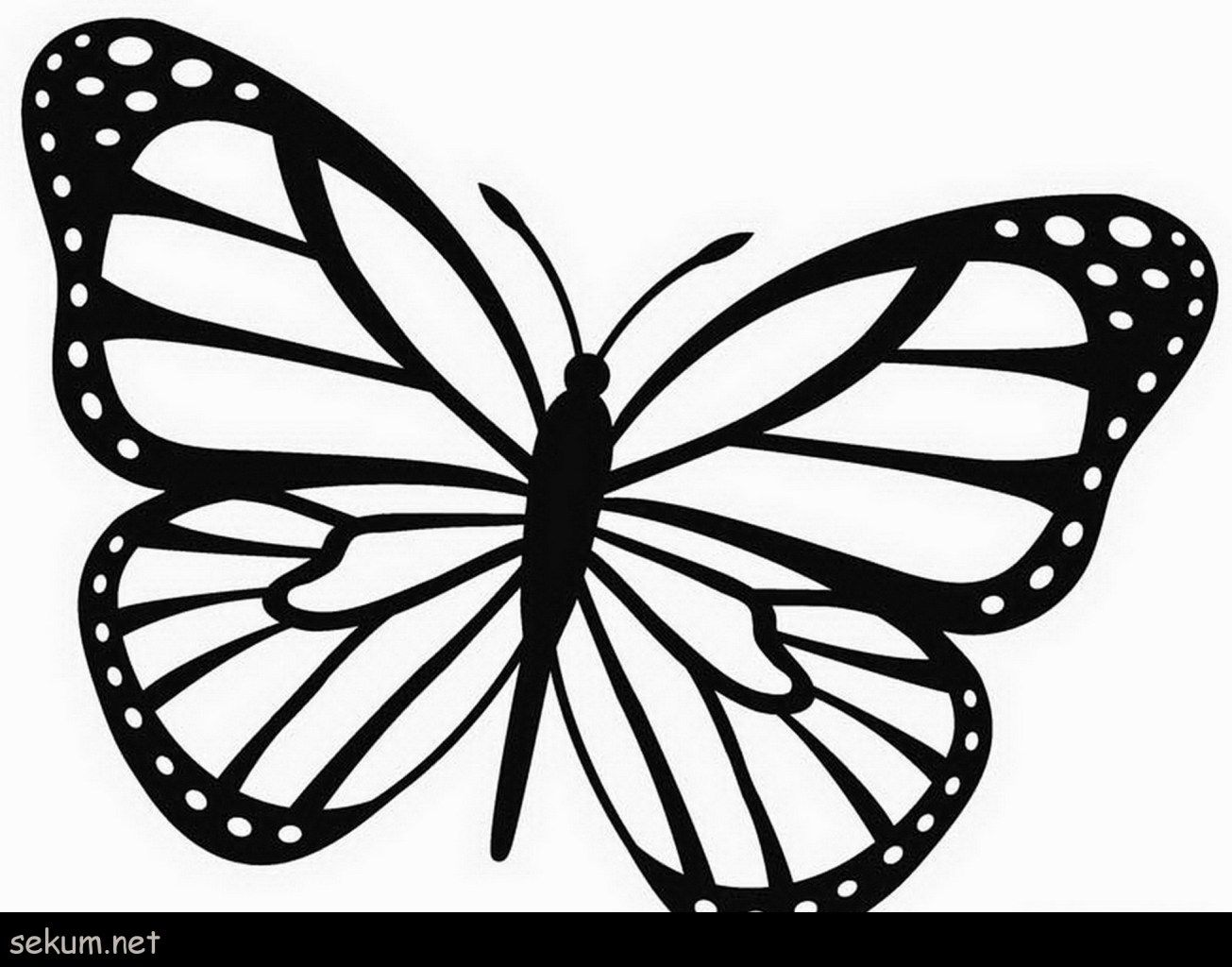 Brilliant Image Of Monarch Butterfly Coloring Page Davemelillo Com Butterfly Printable Butterfly Outline Butterfly Coloring Page