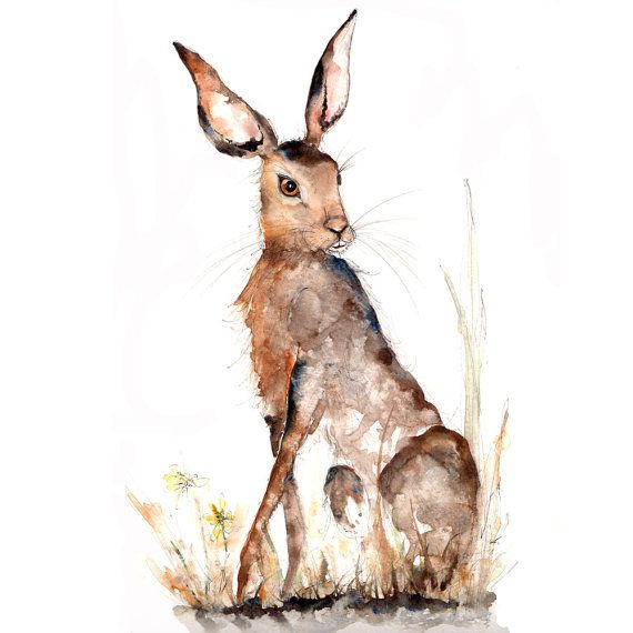 Hare Print 6x4 inch set in a 8x6inch soft white mount by CathWard,