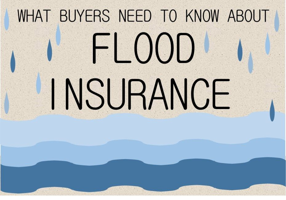 Buying In A Flood Zone Flood Zone Flood Insurance Home Buying Process