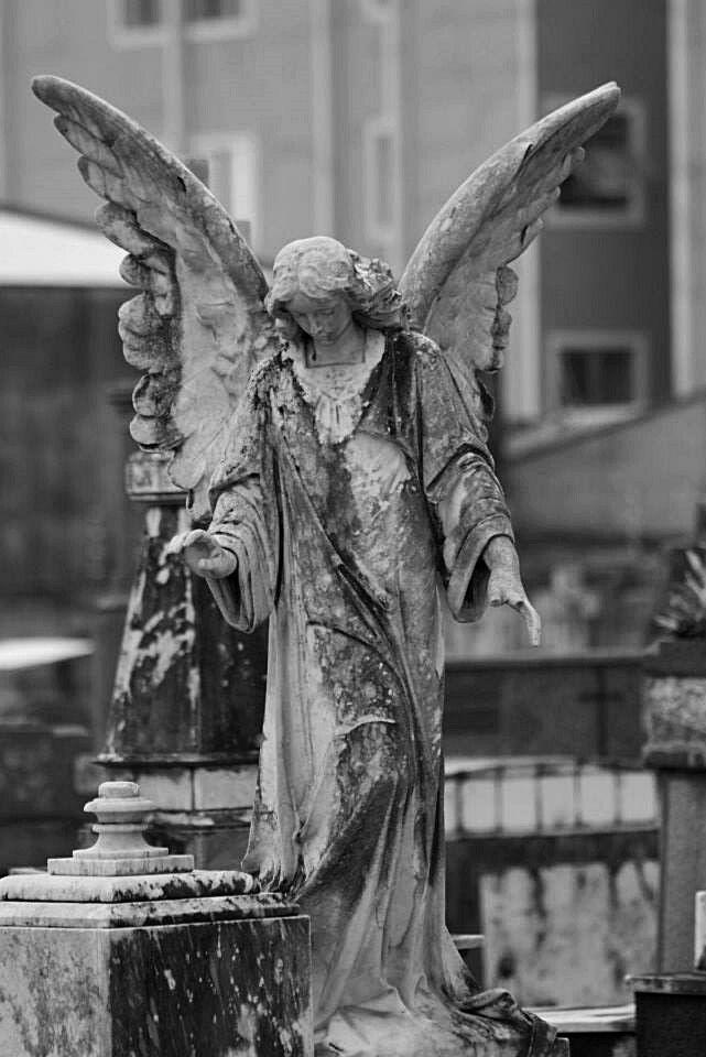 Anjos na terra.