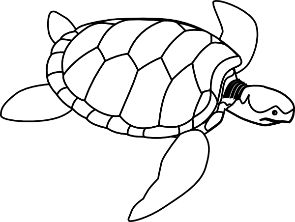 Black And White Drawing Of A Sea Turtle To Print Free Turtle Outline Sea Turtle Art Animal Coloring Pages