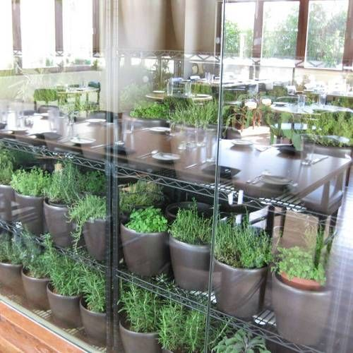 palms place pictures herb garden garden cafe outdoor gardens on outdoor kitchen herb garden id=58990