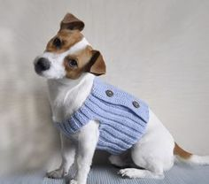 Knitting Pattern with Crochet Elements - Blue Dream Dog Sweater