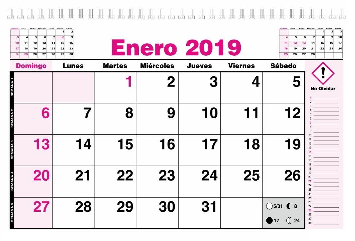 Calendario 2020 Chile Vector.Calendario Enero 2019 Chile Calendario Enero 2019 Chile