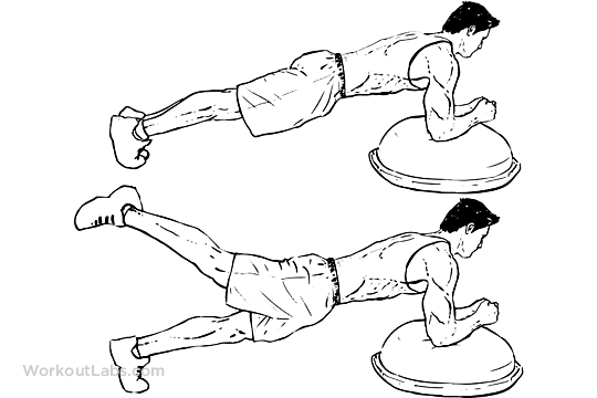 Bosu Ball Plank Leg Lifts