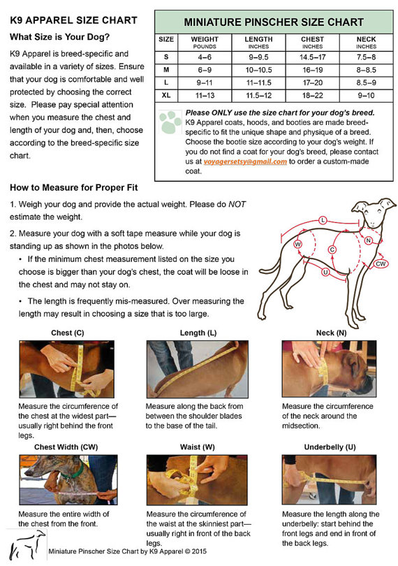 Miniature Pinscher Weight Chart