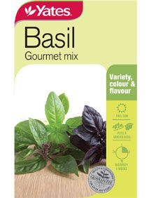 Basil 'Gourmet Mix' An attractive culinary collection of Basil varieties including Thai Basil, Lemon Basil, Cinnamon Basil and Purple Basil for colour. Great for potager gardens and pots.