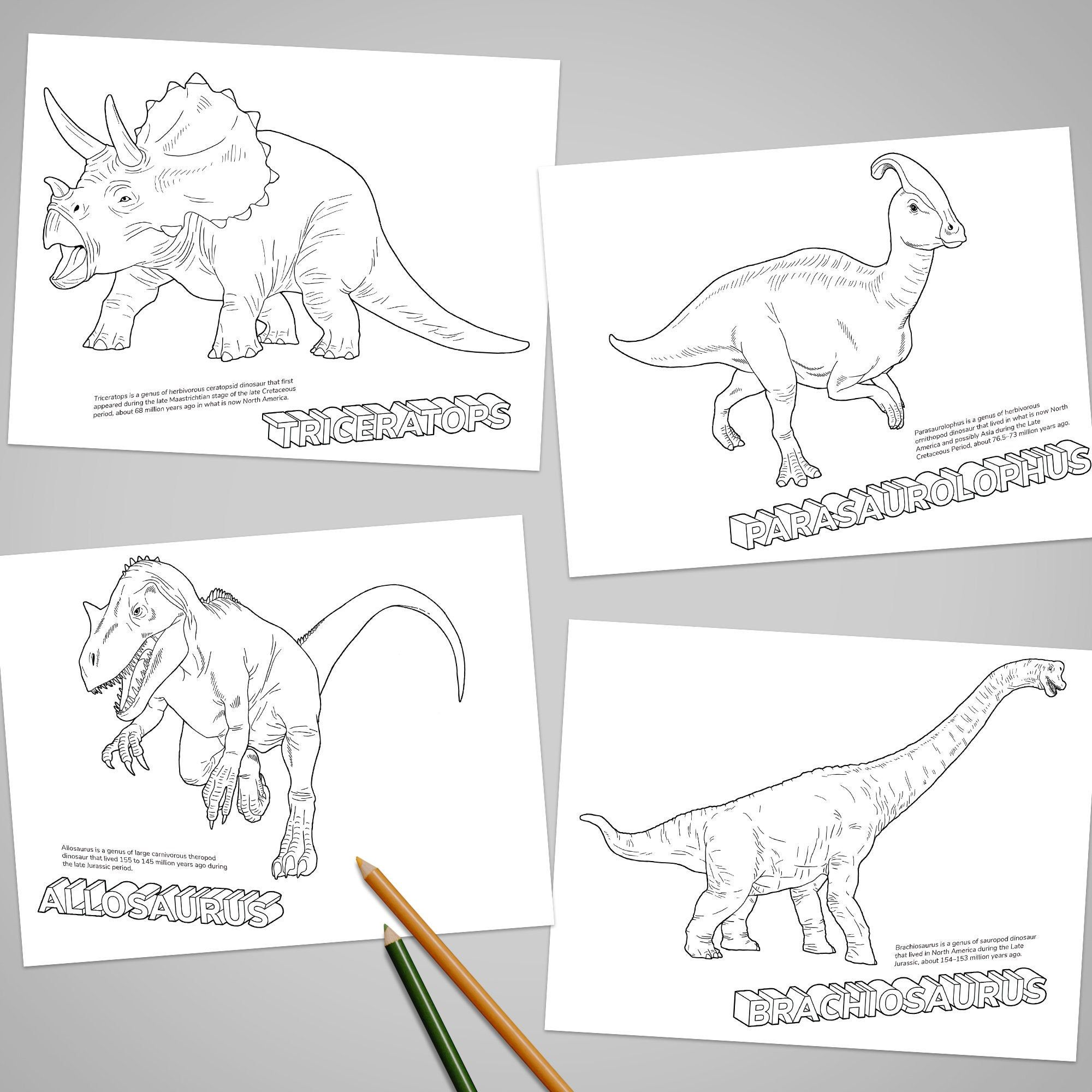 30 Dinosaurs Coloring Book Printable Art For Kid And Teens Etsy In 2021 Dinosaur Coloring Pages Coloring Books Dinosaur Coloring