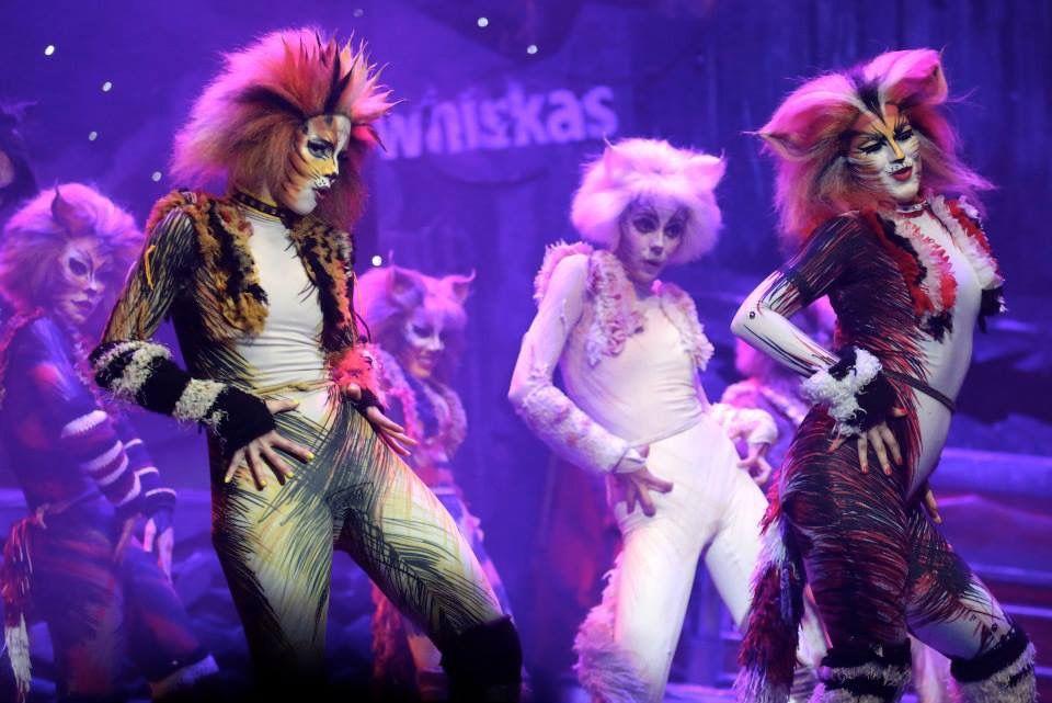 Nefastuloooooo Carolinalaris Demeter Catsmusical Catsmexico Musical Musicales Disfraces Arte