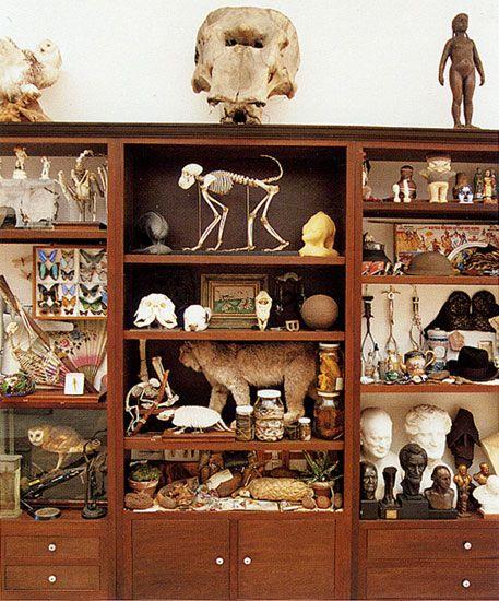 mark dion cabinet of curiosities. Black Bedroom Furniture Sets. Home Design Ideas