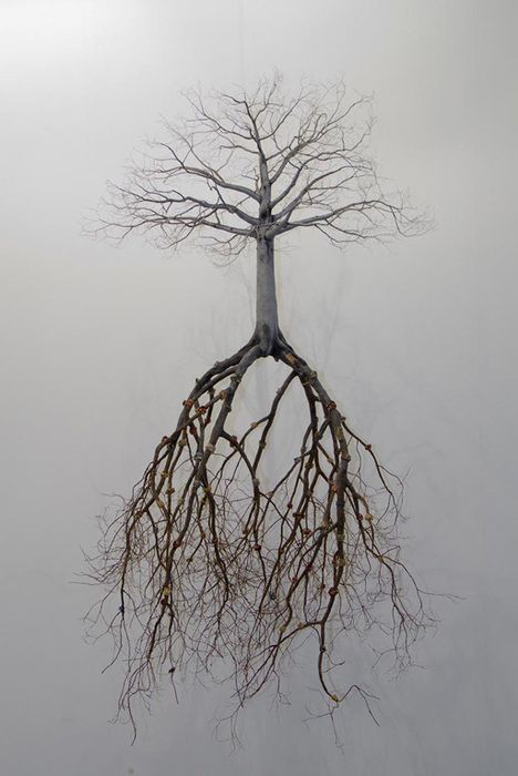 Such an out loud analogy!!!! Plant yourself deep, your roots need to be firm to withstand trials ... Even smarter pla… | Tree roots, Tree sculpture, Saatchi gallery