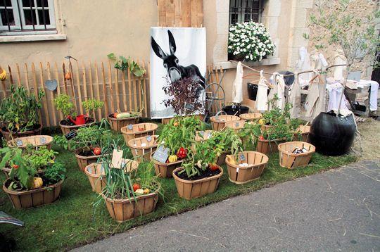 joli potager pour jardin astuces jardin et plantes pinterest. Black Bedroom Furniture Sets. Home Design Ideas
