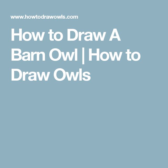 How to Draw A Barn Owl | How to Draw Owls