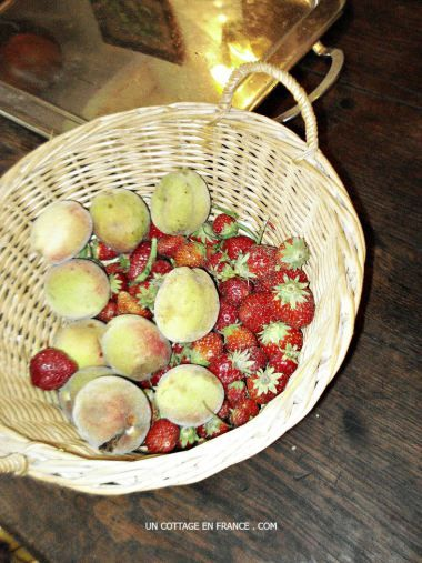 Le panier de fraises et de peches nouvelles 1