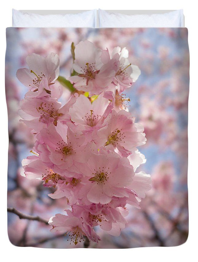 Pretty Pink And Bright Spring Blossom Duvet Cover For Sale By Matthias Hauser Bright Spring Pretty In Pink Blossom