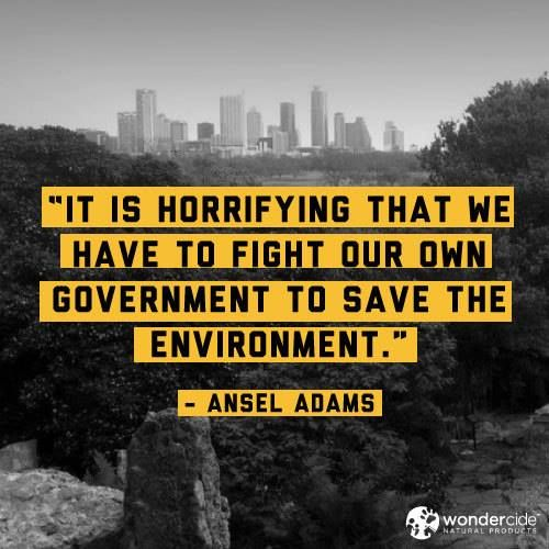 It is horrifying that we have to fight our own government to save the environment. - Ansel Adams