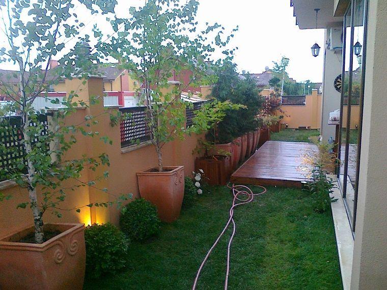 Jard n peque o con rboles en macetas grandes jardines for Jardines en macetas