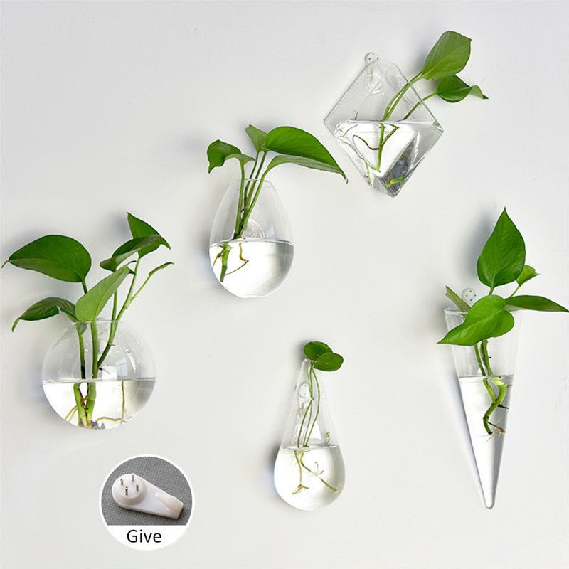 Home Garden Clear Wall Hanging Plant Terrarium Glass Planter Vase Pots Container Hanging Vases Glass Planter Hanging Plants