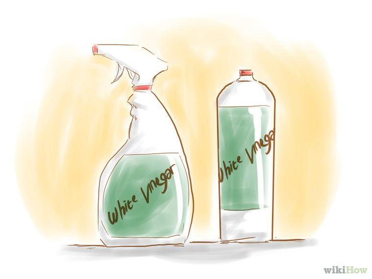 4 ways to get rid of dog urine smell dog urine dog pee