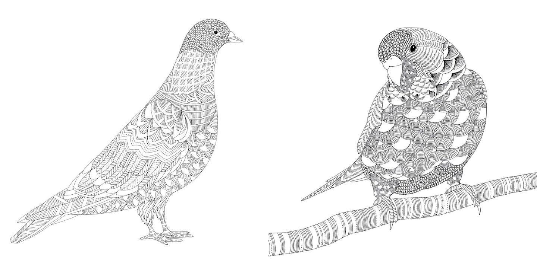 Millie Marotta Animal Kingdom Coloring Book