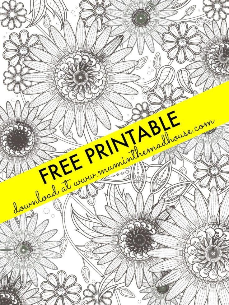 Sunflower Colouring Page | Pinterest | Laminas para colorear ...
