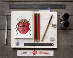 ★ Watercolour and Ink Drawing   Art Journals, Moleskines & Travel Sketchbooks ★