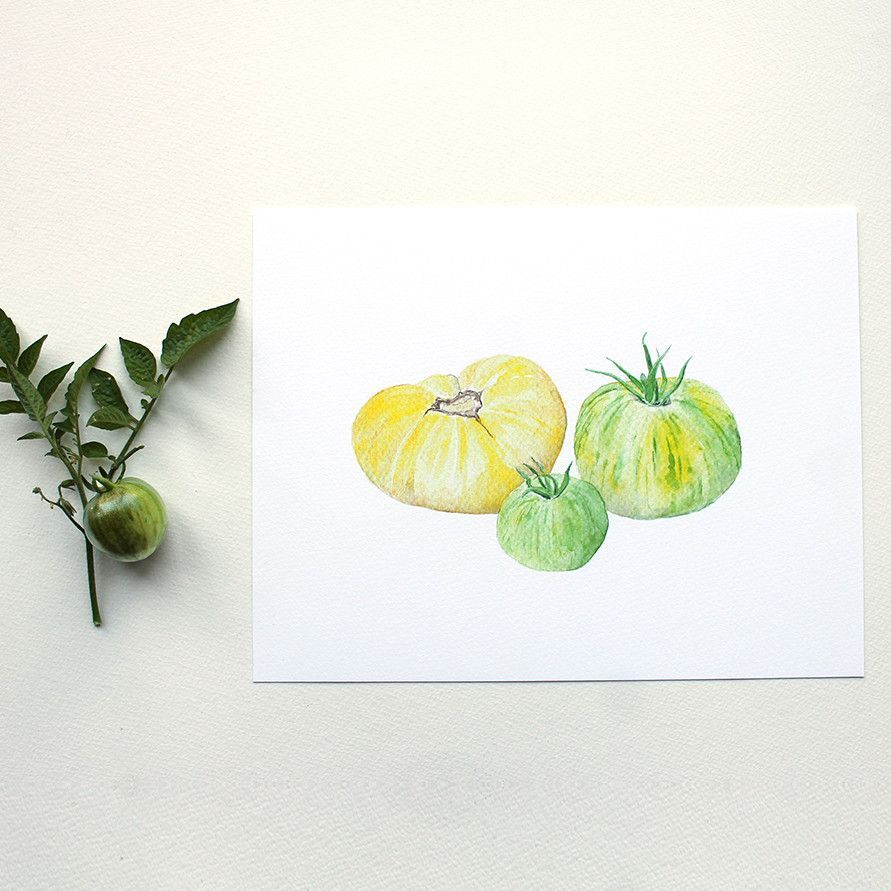 Watercolor print by Kathleen Maunder of three heirloom tomatoes.