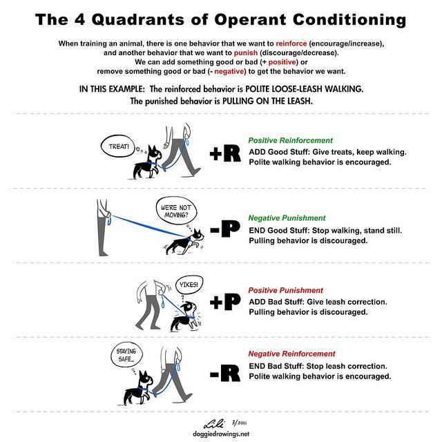The Four Quadrants Revised Operant Conditioning Dog Training