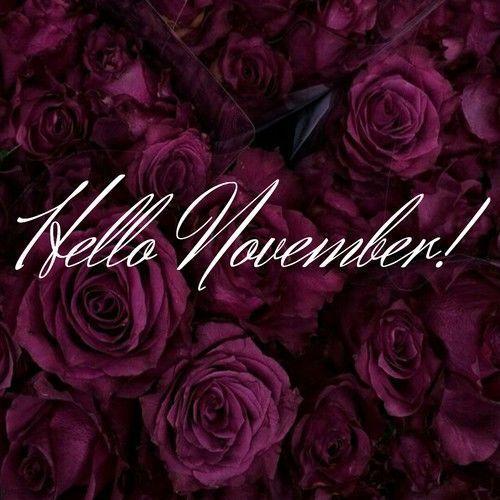 Hello November #hellonovember Hello November #hellonovemberwallpaper