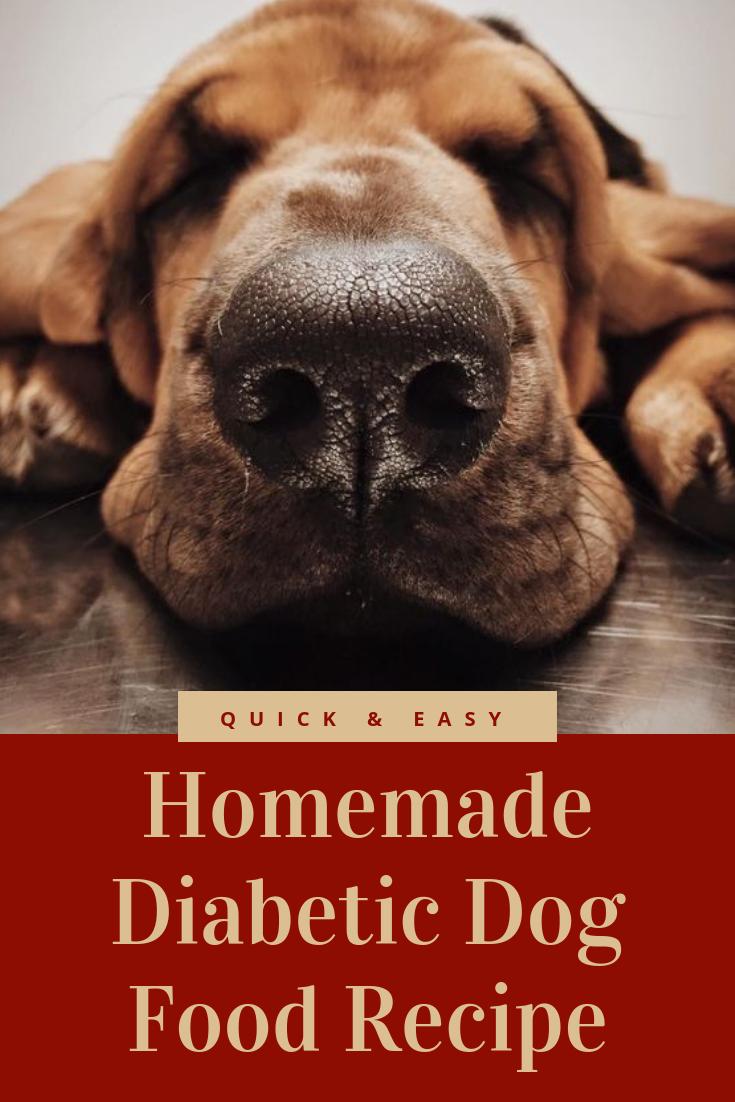 Quick & Easy Homemade Diabetic Dog Food Recipe Diabetic