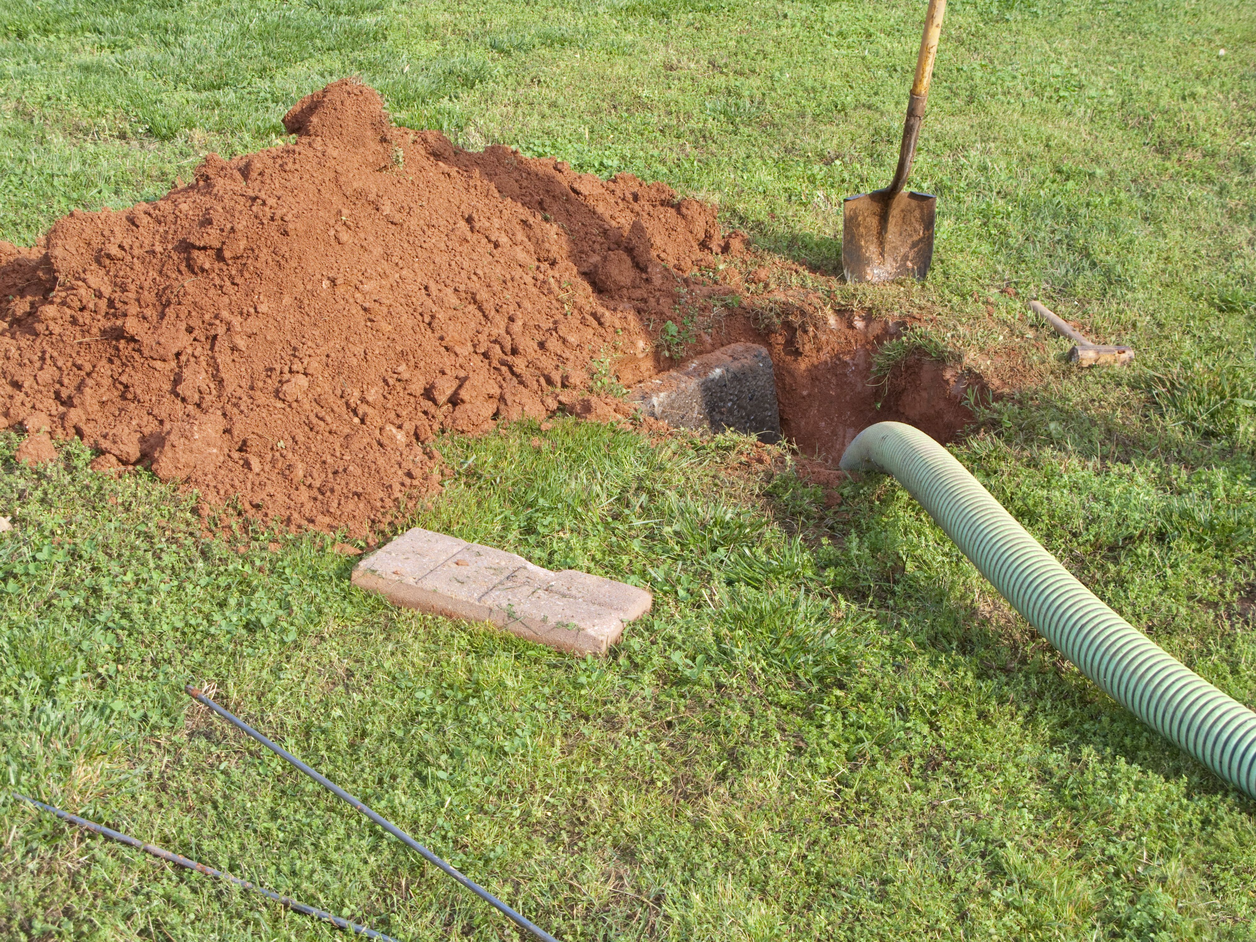 How to Install and Care for a Leach Field Hunker Yard